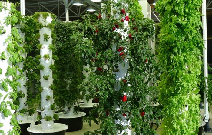 vertikaler Garten mit nützlichen Pflanzen, die gleichzeitig sehr schön aussehen