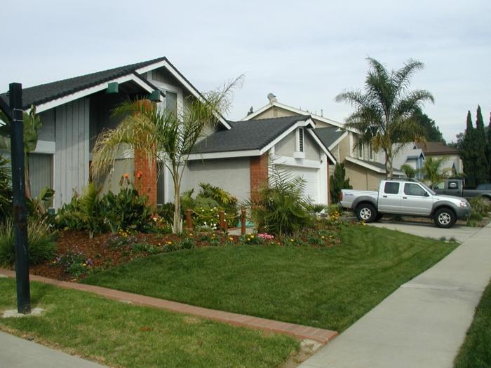 Palmen in Vorgarten sind schöne Ergänzung, wenn das Klima das erlaubt