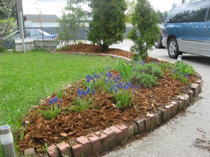 Vorgarten Ideen im Frühling blaue Blumen pflanzen das Gras nicht rasen