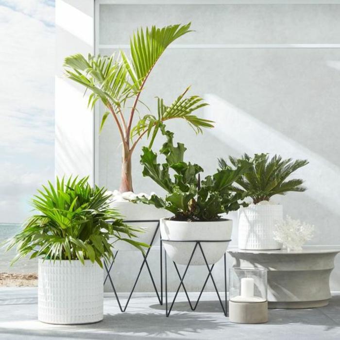 dekoideen terrasse schöne luxusdekoratione auf der terrasse töpfe und grüne pflanzen modelle kerze