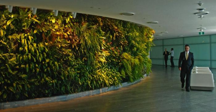 vertikal Pflanzen - ein Spaziergang wie in der Natur im Büro machen