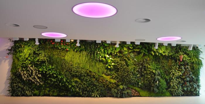 rosa Lampen die vertikal Pflanzen verschönern - ein modernes Design