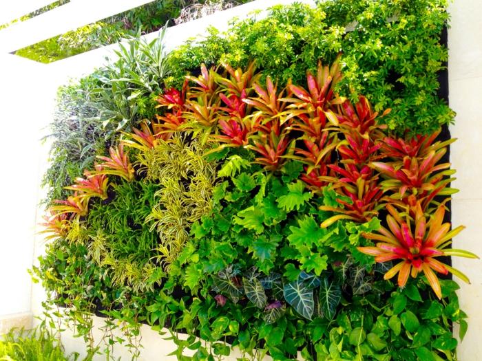 grüne,rote und gelbe Blumen vertikal pflanzen in einer Komposition