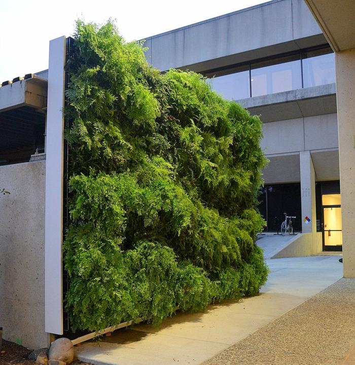 vertikal Pflanzen im Innenhof - eine ganze grüne Wand