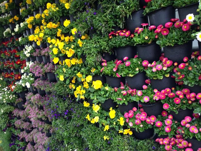bunte Blumen in spezieller Wand zum vertikal Pflanzen - so bildschön