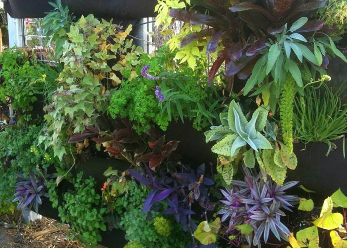 exotisch vertikal Pflanzen wie in einem botanischen Garten