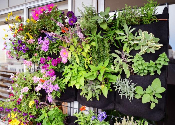 eine spezielle Wand in schwarzer Farbe mit viele vertikal Pflanzen