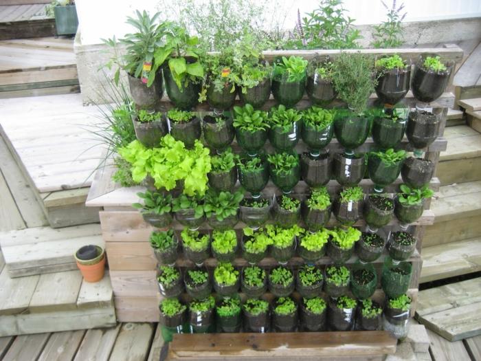 Pflanzenwand selber bauen - DIY Projekt mit Flaschen - leicht zu wassern