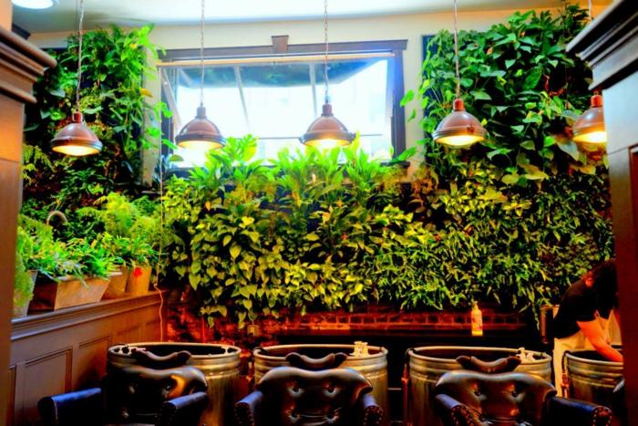 ein Lokal mit interessante Beleuchtung und vertikale Begrünung am Fenster