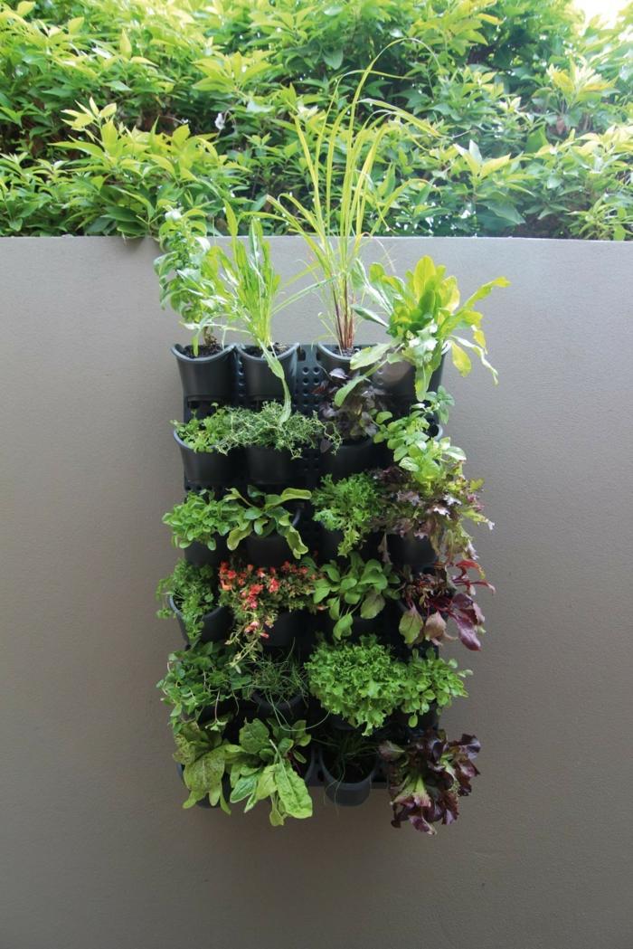 schwarze Wand mit ein paar eingebauten Blumentöpfen -Pflanzenwand selber bauen
