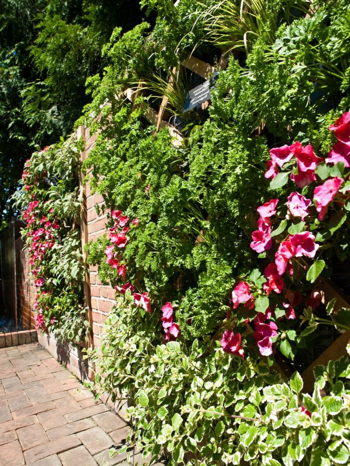 rosa Blumen mit großen Blüten - ein Pflanzwand selber bauen