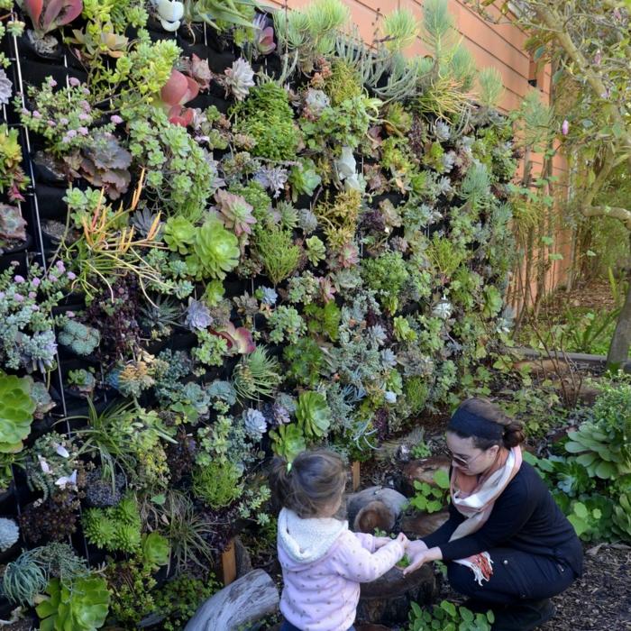 vertikale Bepflanzung mit Hauswurzen Mutter eine Wand im Garten