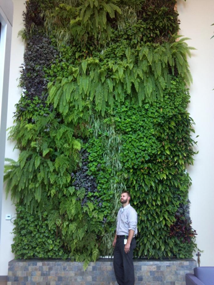 Hohe Decke mit vertikalen Bepflanzung - exotische und dekorative Pflanzen