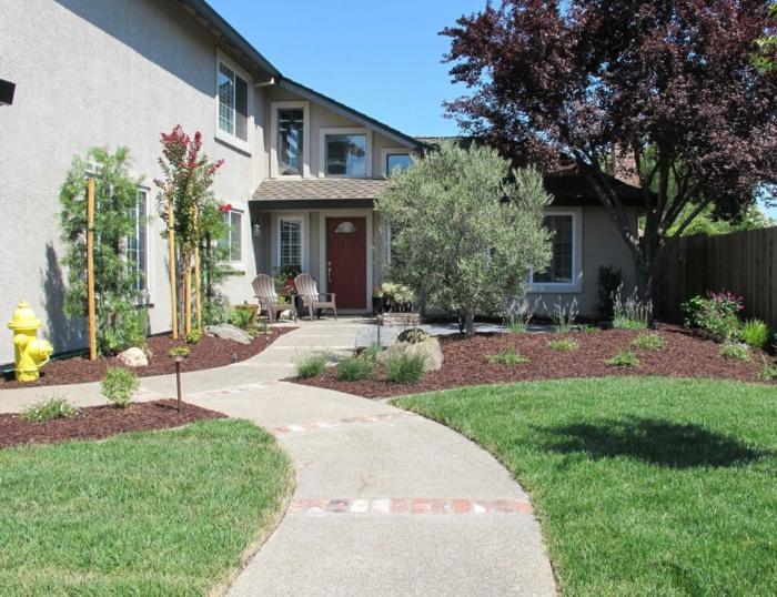 Rasen und ein Weg, Zierbäume, zwei Stühle - Vorgarten Ideen