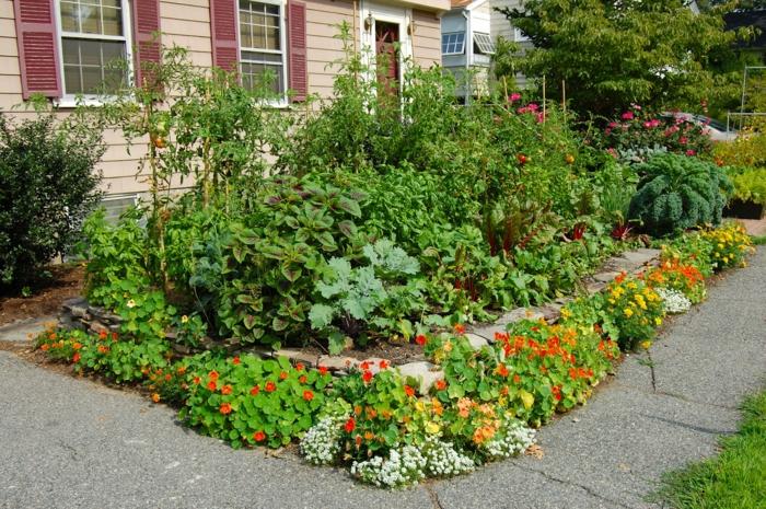 Man kann nicht nur dekorative Pflanze züchten, sondern auch Obst und Gemüse