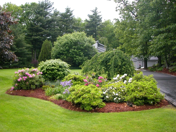Rasen und Blumenbeete, Zierstrauche - moderner Vorgarten