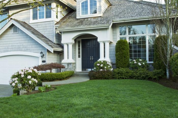 ein Rasen und Rosenstrauch, grüne Hecke, niedrige Bäume - moderner Vorgarten