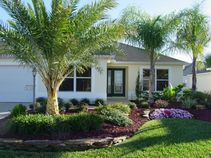 Vorgarten Ideen für eine exotische Gestaltung mit Palmen, Blumen und Grass