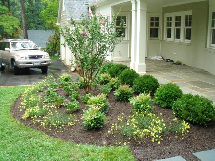 kleine Blumenbeete mit gelben Blüten Rosenstrauch im Mittelpunkt - Vorgarten Pflanzen