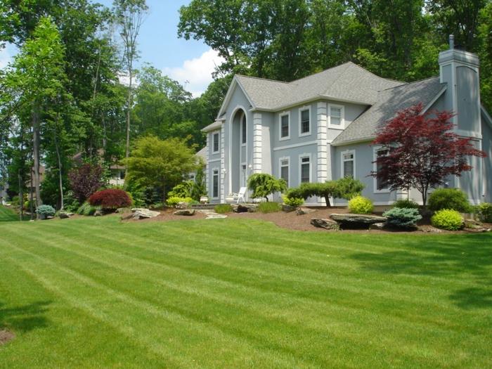Rasen und kleinen Zierbäume, kleines, schönes Haus - Vorgartengestaltung Ideen