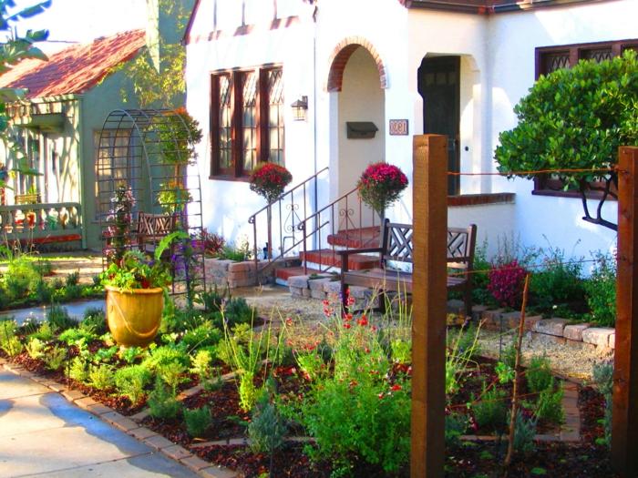 kleine rote Blumen und ein Topf - schöne Vorgärten, kleiner Vorgarten