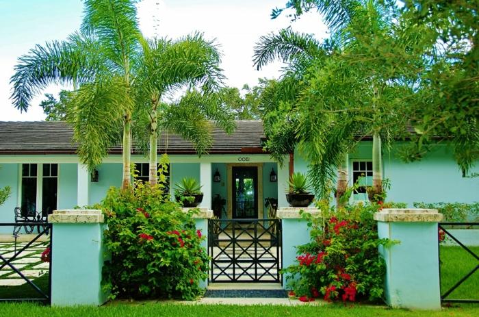 einen exotischen Vorgarten zum Träumen - schöne Vorgärten