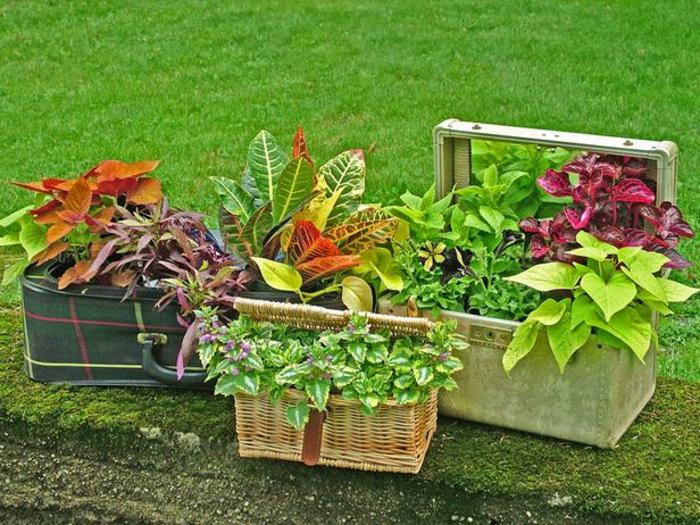 balkon blumentopf kasten und körber als blumentöpfe verwenden koffer neu gestalten grüne pflanzen