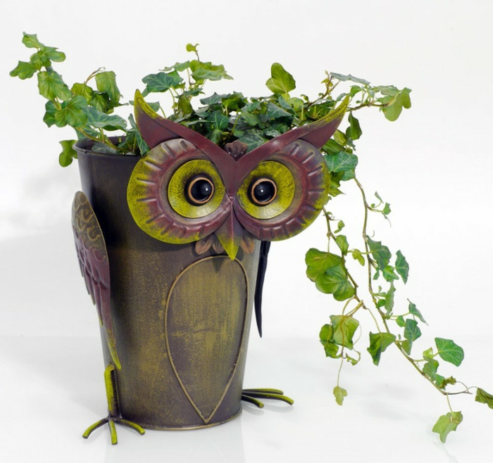 schöne eule in grüner und lila farben eule dekorativer topf ideen beobachtet mit großen augen grüne pflanze