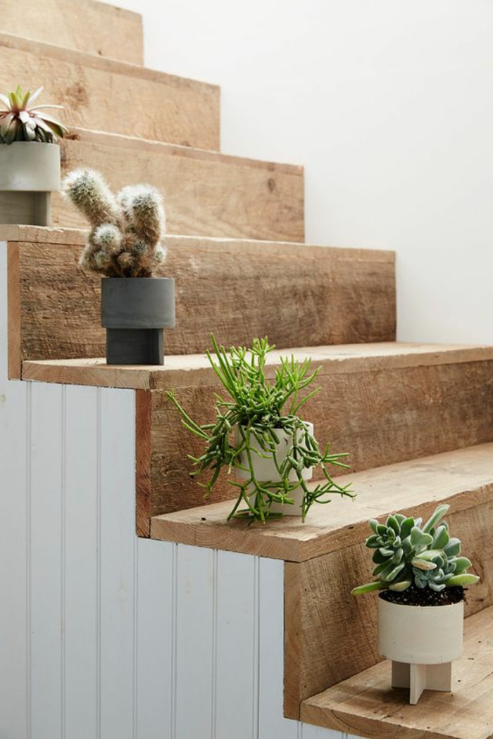echtes Holz Verkleidung Treppenaufgang Kakteen deko