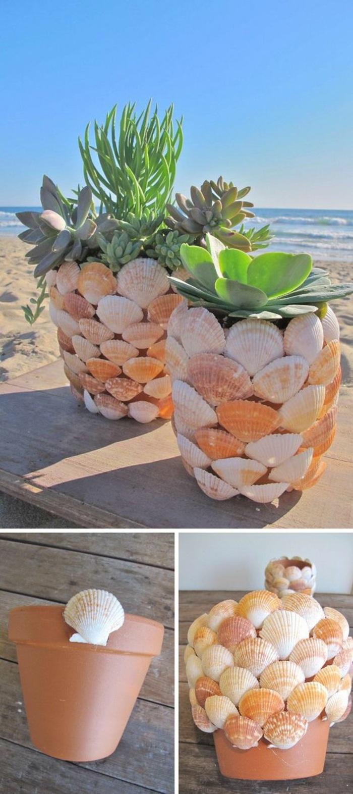coole bastelideen - maritime deko, blumentöpfe mit muscheln verzieren, pflanzen, meer