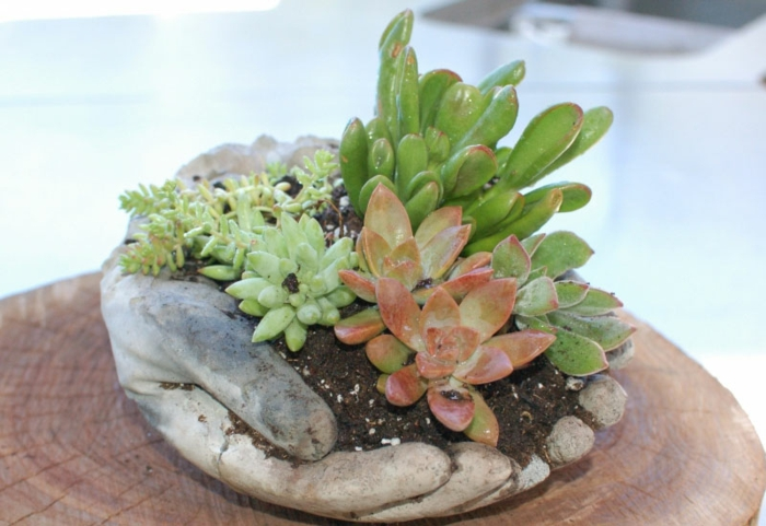 betonhänge selber machen, diy deko, gartendeko, pflanzen
