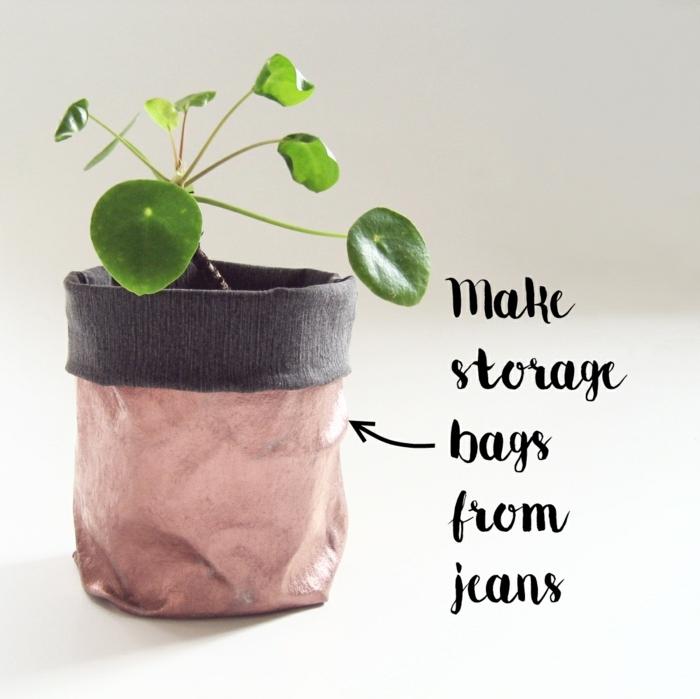 blumentöpfe selbst gestalten ideen grüne pflanze in einem topf anpflanzen ideen golden beige pflanze idee jeans