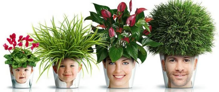 blumenkübel bepflanzen ideen bilder ausgefallene topfideen grass blumen pflanzen fotos von der familie