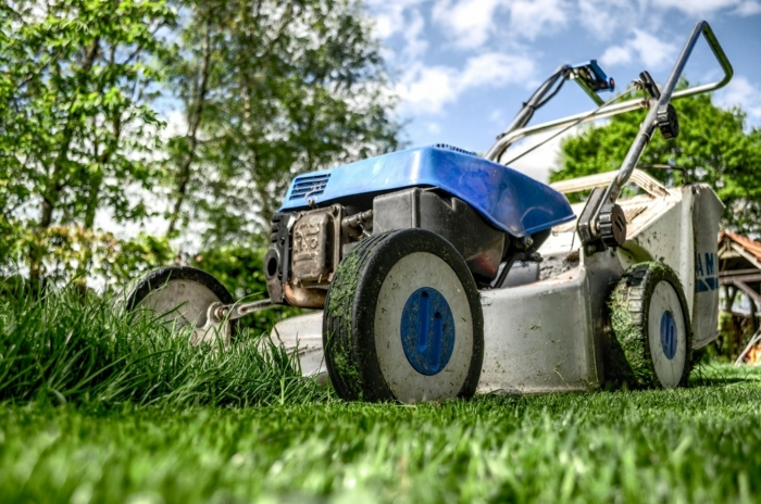 englischer Rasen grüner Gras ein altes Gerät