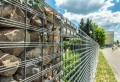 Gabionen – ein unentbehrliches Gestaltungselement jedes modernen Gartens