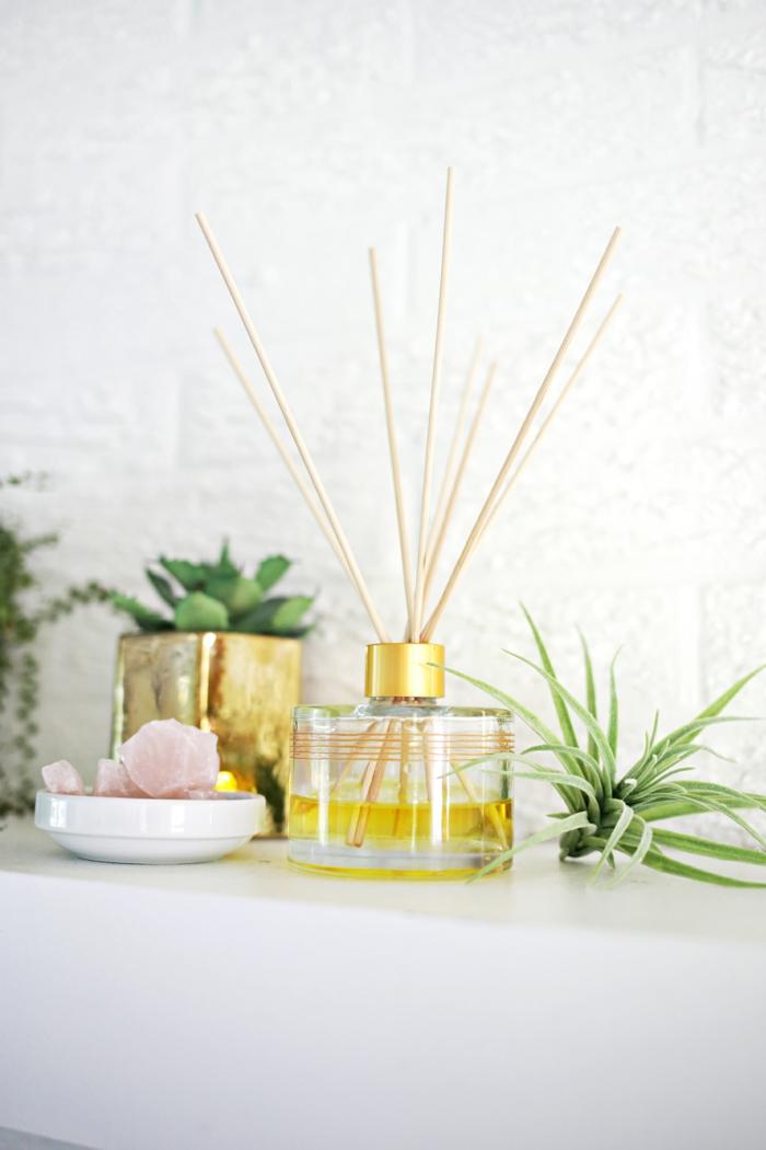 raumduft selber machen, parfumflasche, raumerfrischer, pflanzen, dekoartikel