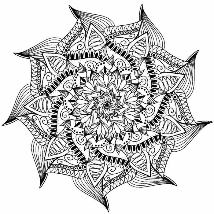 Bild mit einem Wiederholungsmuster zum Ausmalen, komplexe Linien, Lotusform, Spiralen