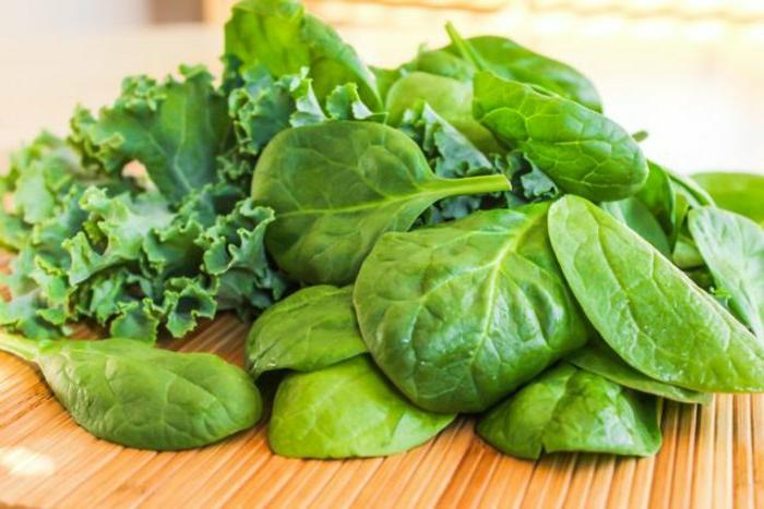 appetitzügler die grüne salate gelten als solche grüne farbe des essens naturprodukte zum genießen fiber