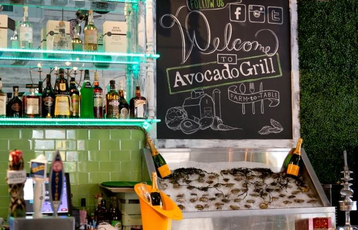 avocado zu jeder zeit essen gesunde fette geben viel energie avocado restaurant bietet alles mit dem frucht