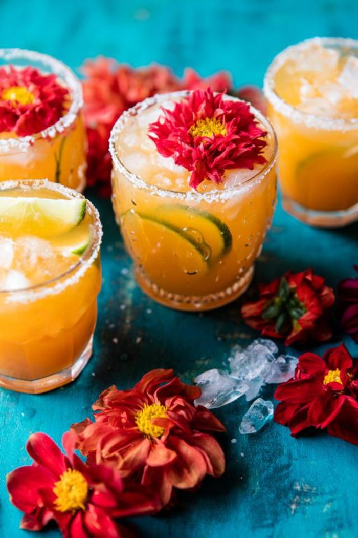 Rezepte für Cocktails mit Zitrusfrüchten, attraktive Getränke mit Blumen, die perfekte Erfrischung für die heißen Sommertage