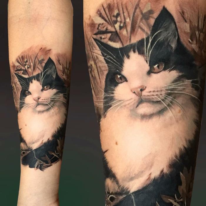 hier ist eine schöne weiße katze mit einer pinken nase, grünen augen und weißen, langen oberlippenbärten - idee für einen katzen tattoo auf hand
