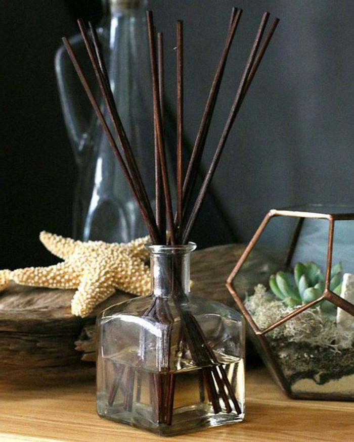 duft und raum, seestern, terrariom, florarrium, dekoartikel, dufterfrischer