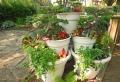 Pflegeleichter Garten – der Traum von allen Hobbygärtnern