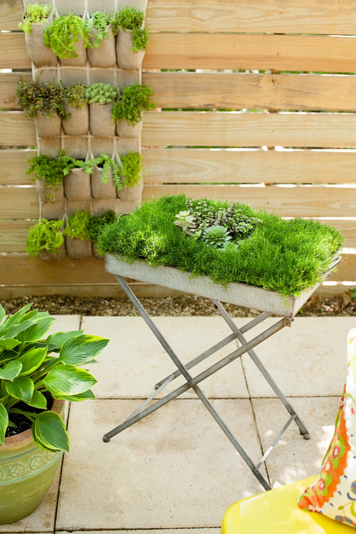 Moosbild und vertikaler Garten - pflegeleichte Gärten, die man selbst gestalten kann