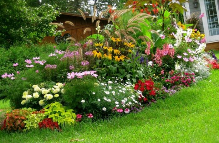 pflegeleichter Garten - die pflegeleichte Pflanzensorte verschiedene Blumen