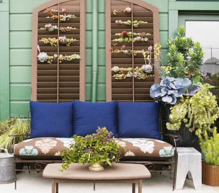 Pflegeleichter Garten - ein Sofa in blauer Farbe, Hauswurzen vertikaler Garten