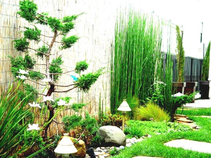exotischer pflegeleichter Garten aus dem Osten hinter Sichtschutz, Zierbaum