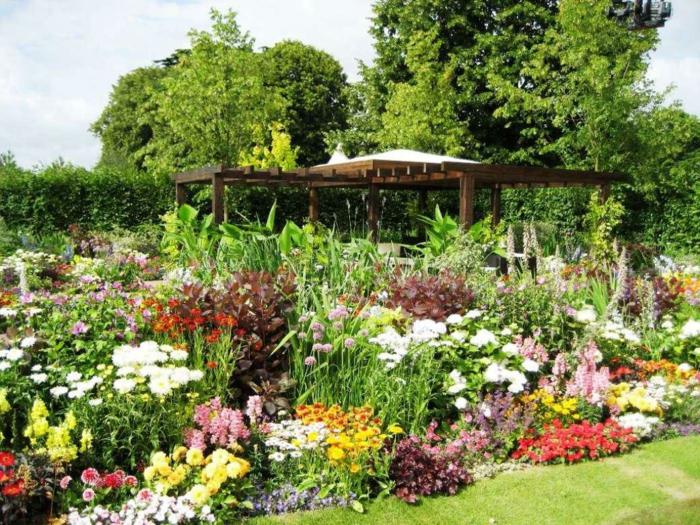 Pflegeleichter Garten Mit Vielen Verschiedenen Blumen Und Ein Pergola Aus  Holz