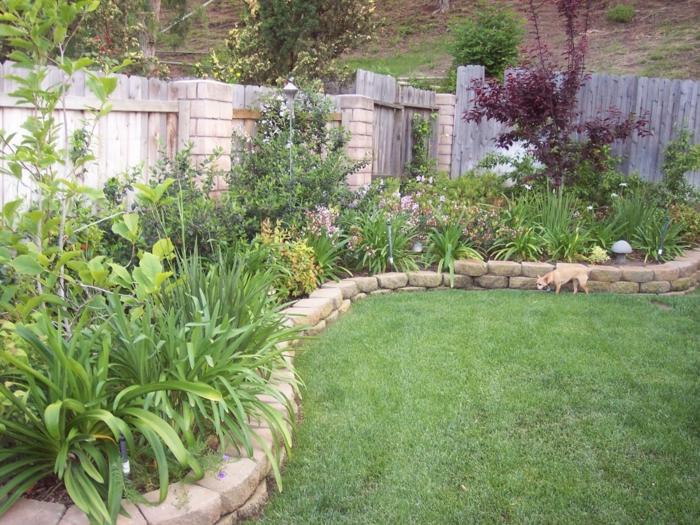 viele grüne Pflanzen - pflegeleichte Gartenpflanzen - ein englischer Rasen
