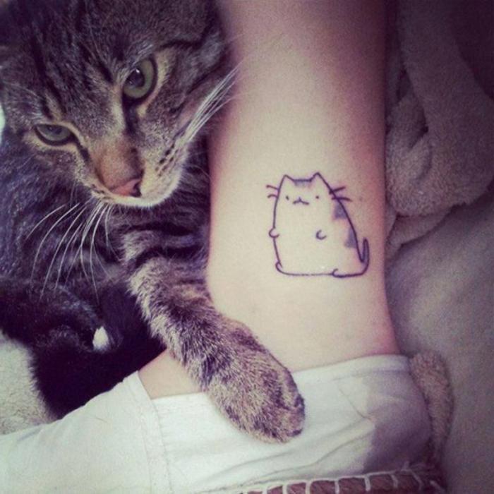 eine graue katze mit großen grünen augen und mir langen weißen vibrissen und ein bein mit einem kleinen katzen tattoo
